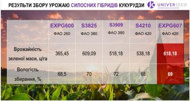 Результаты сбора урожая силосных гибридов кукурузы UNIVERSEED