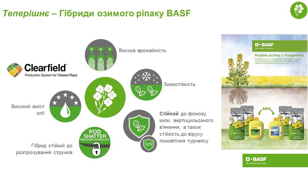 Пресс-служба компании BASF