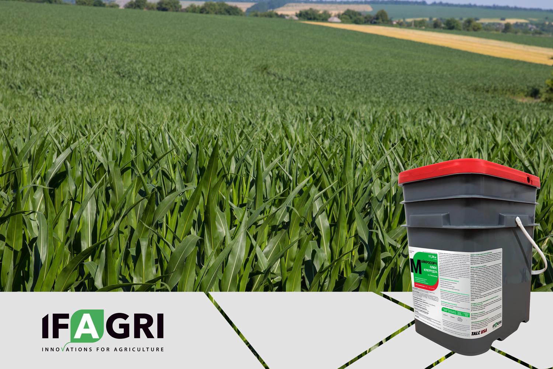 Сухой инокулянт для кукурузы «МайкроСорч Плюс Кукуруза»