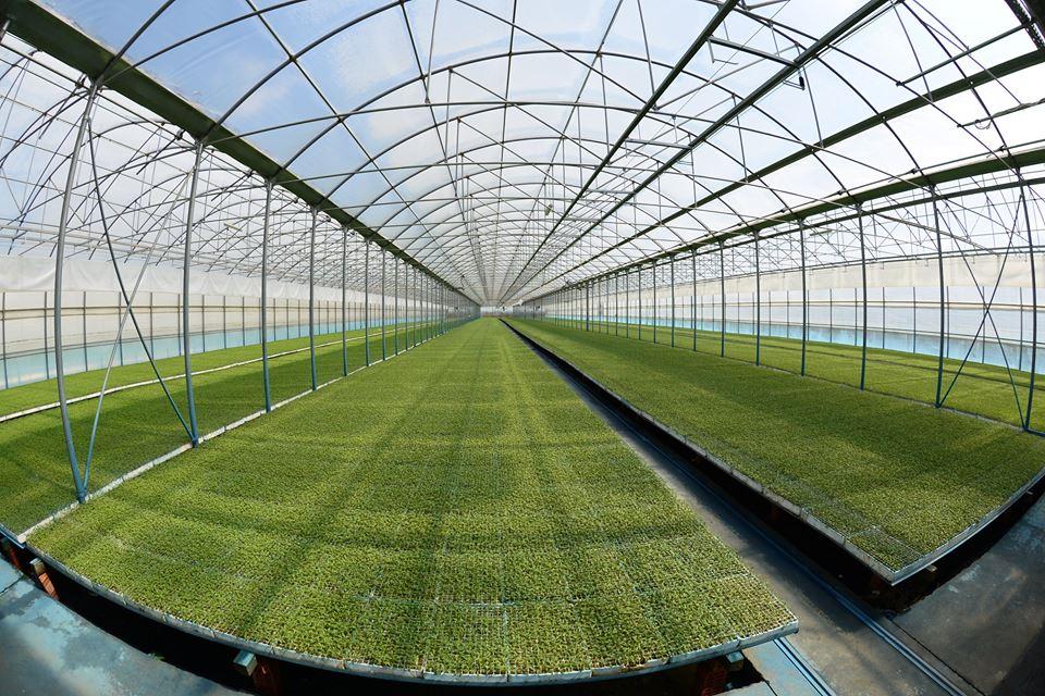 ЕБРР выделил $15 млн кредита для Agrofusion