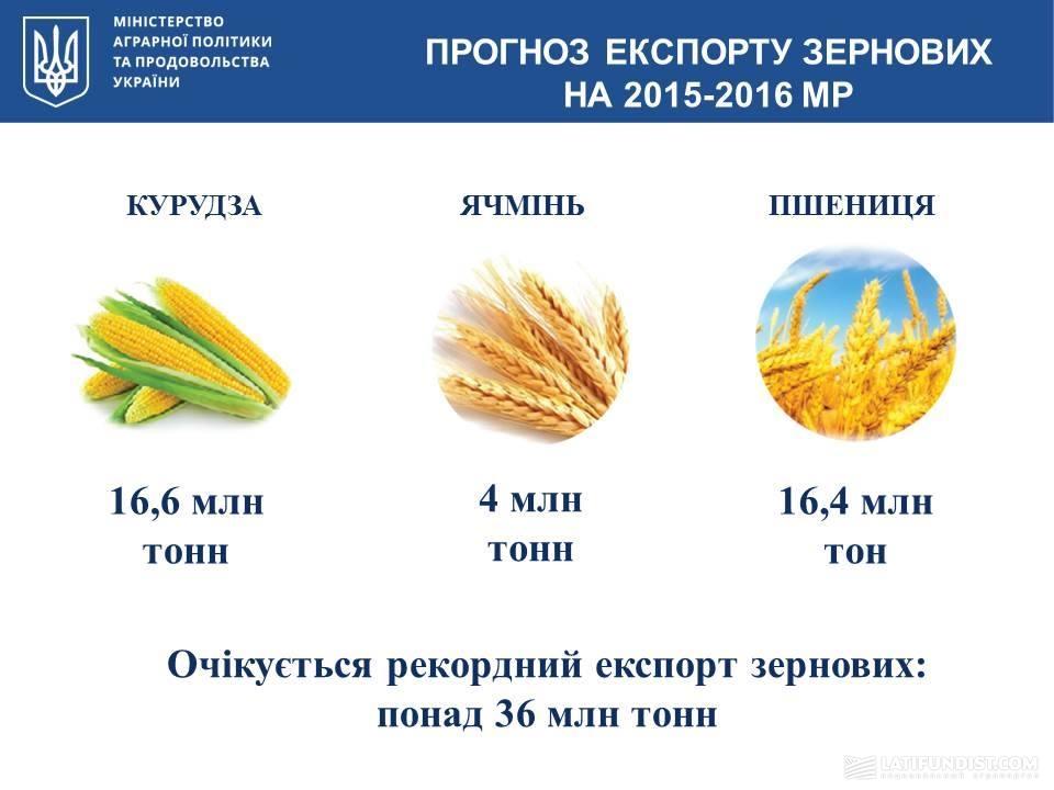 Прогноз экспорта зерновых