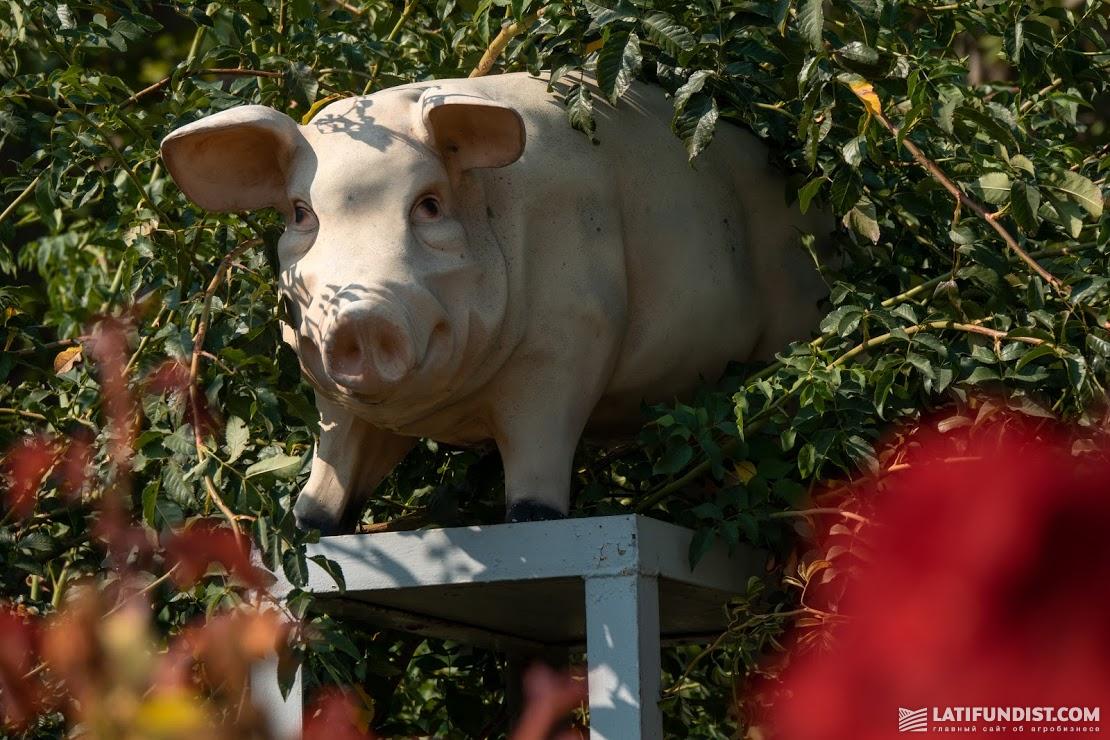 Памятник свинье