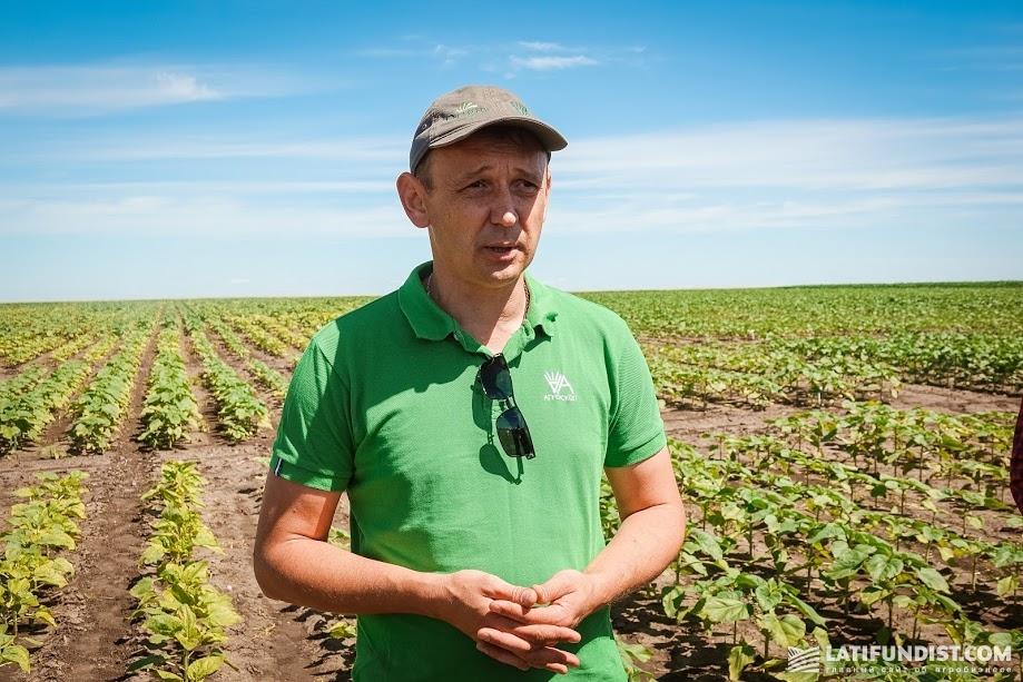 Сергей Скоромный, продукт-менеджер по питанию растений компании «Агроскоп Интернешнл»