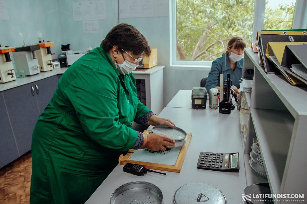 Елена Осипова, заведующая лабораторией Коломакского элеватора за работой