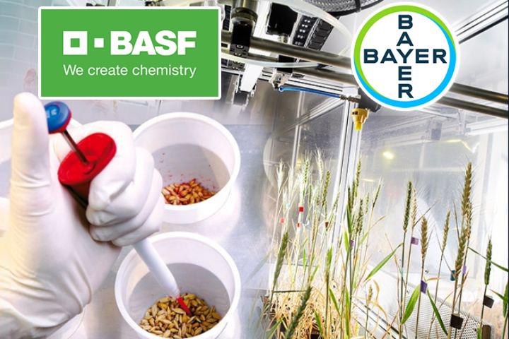 Фактическое завершение сделки BASF и Bayer состоялось 1 августа 2018 г.