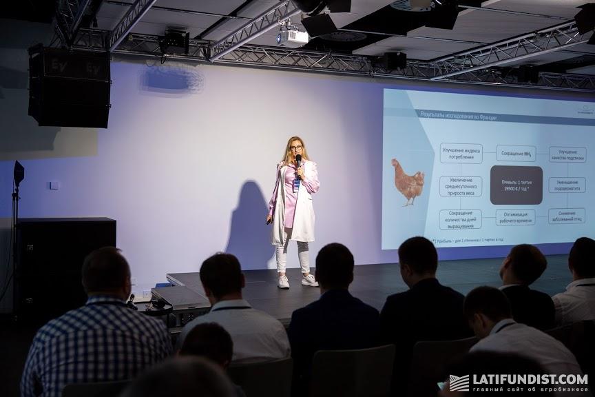 Наталья Фонтено, руководительница проекта Octopus-Center Ukraine