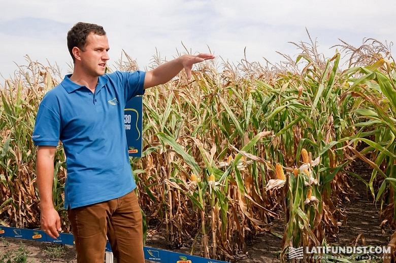 Вадим Волынец, региональный представитель компании Monsanto в Житомирской области