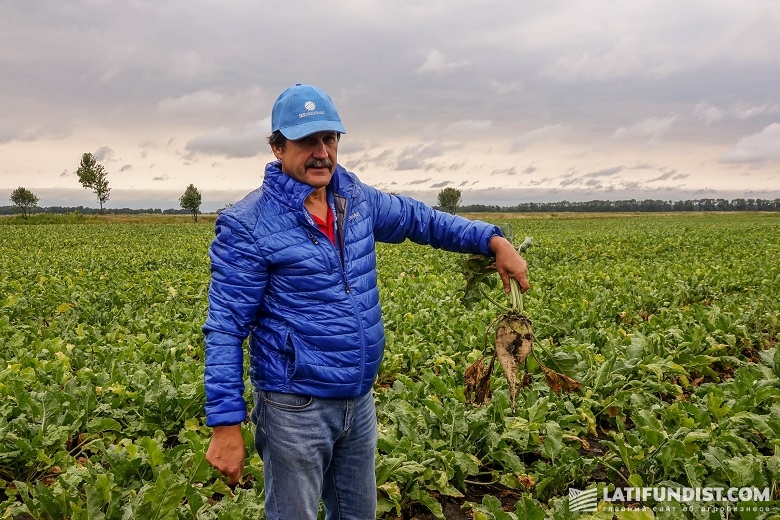 Сергей Дучак, агроном «Сесвандерхаве-Украина»