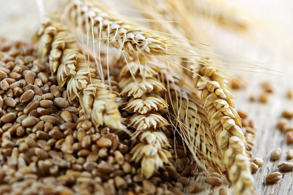 В Турции, куда зачастую экспортируется зерно украинского происхождения, открытого реестра как такового не существует