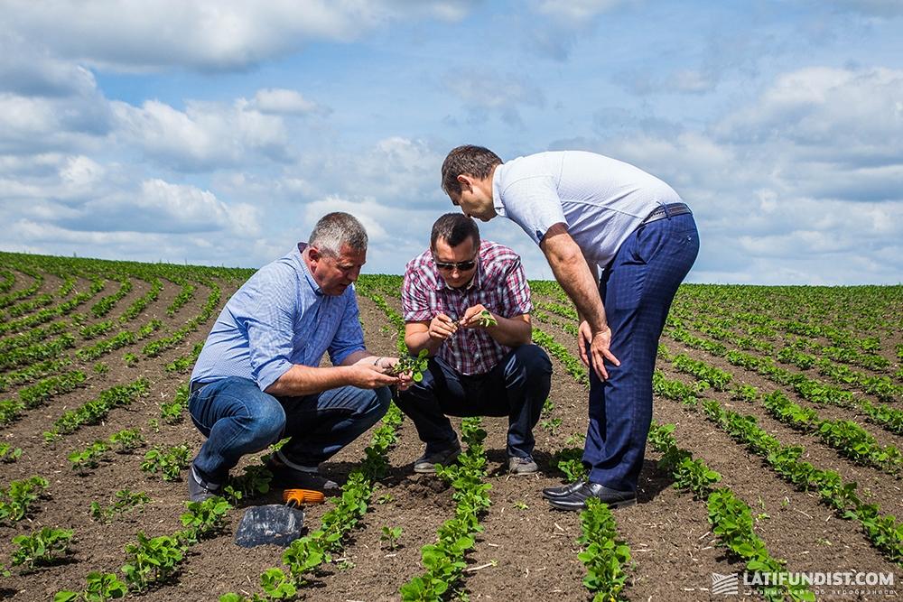 Зигмунд Лампка показывает экспертам посевы сои