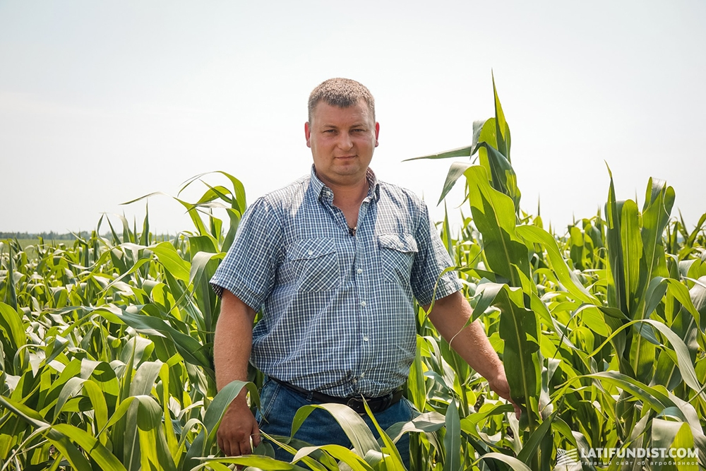 Владимир Семука, заместитель директора по растениеводству «Билагро»