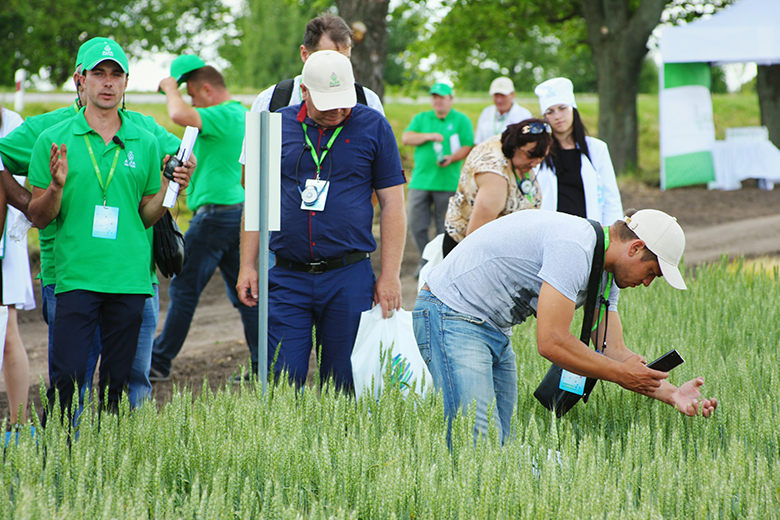 Агрономы осматривают опытно-демонстрационный центр