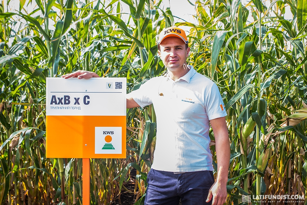 Сергей Красновский, продакт-менеджер отдела кукурузы и масличных культур компании «КВС-УКРАИНА»