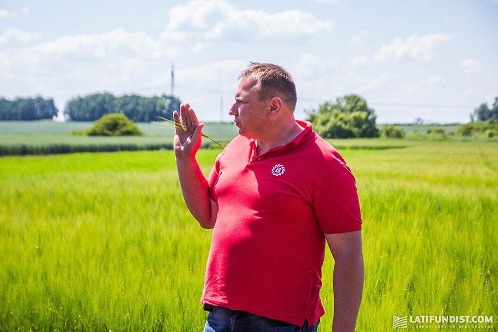 Андрей Здовбицкий, региональный представитель «Лимагрейн Украина» по Житомирской области