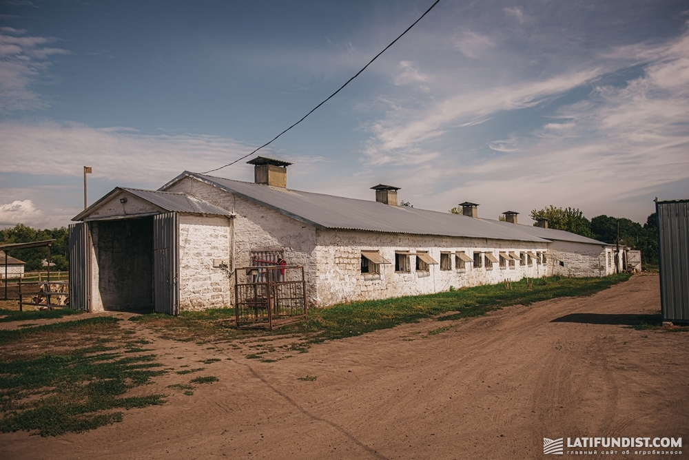 Большую часть денег после покупки животноводческих ферм A.G.R. Group инвестировала в ремонты и модернизацию