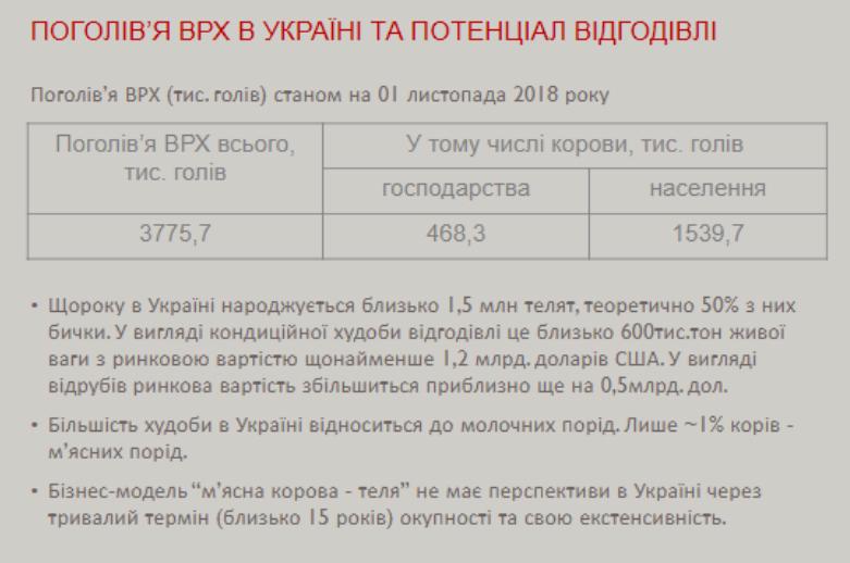 Данные из презентации Евгения Шатохина