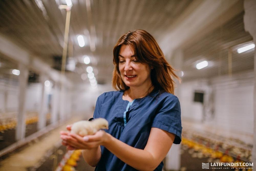 Инна Гармаш, директор птицекомплекса «Морозовка Агро»