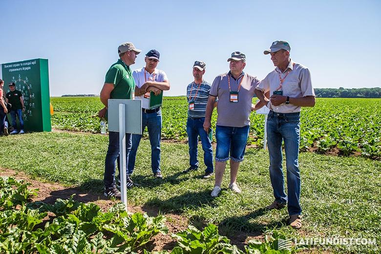 Участники Дня поля изучают сахарную свеклу, которая выращивается с применением нового гербицида