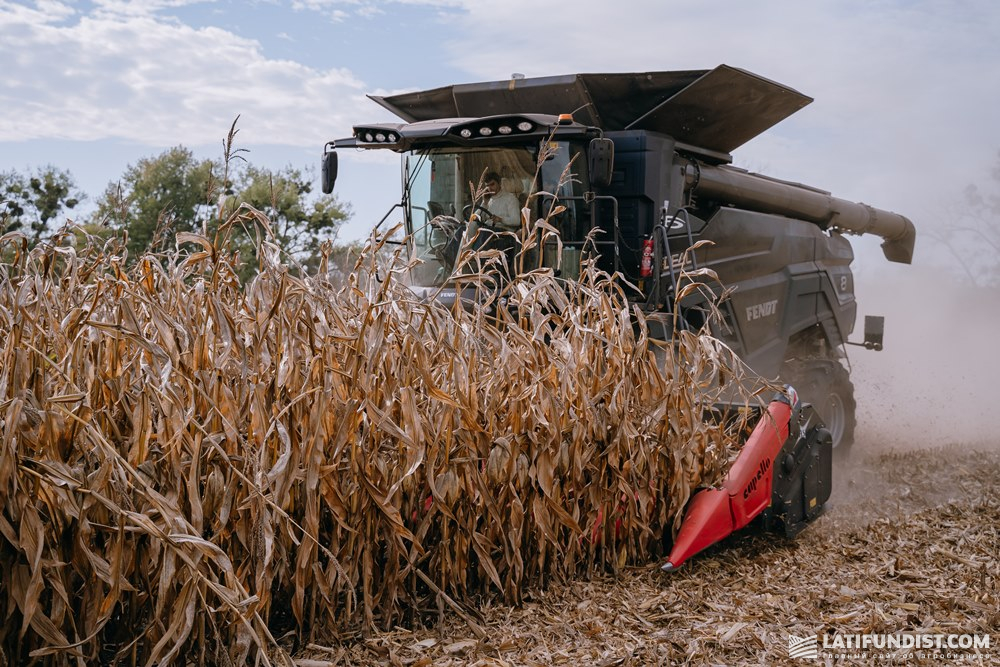 Corn harvest in the field of Batkivshchyna in Zhytomyr region