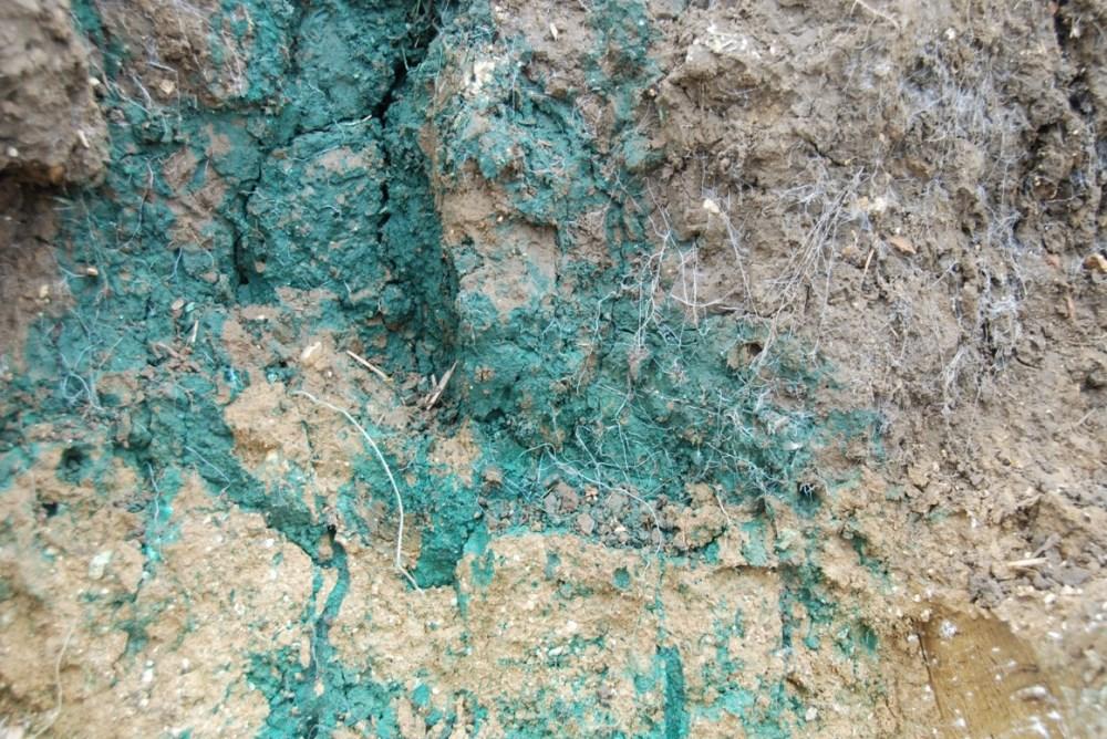Почва на агрофирме семьи Claydon после 18 лет применения системы Opti-till