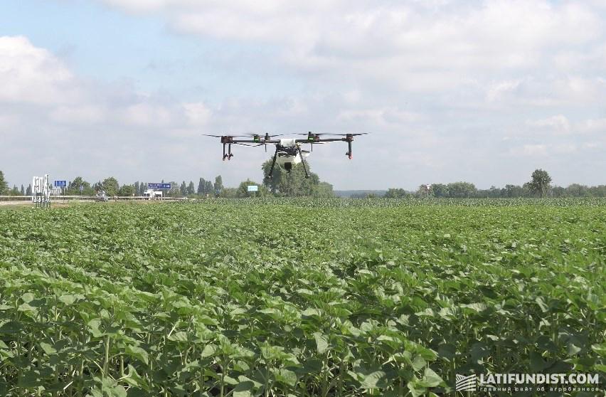 15 июня — краевое внесение инсектицида Разит® с помощью дрона на Smart Field