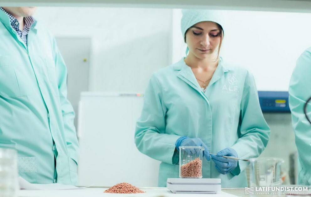 Сотрудники лабораторий ALFA Smart Agro очень довольны. Осыпаемость протравителя Командор Гранд® составила всего 0,08%!