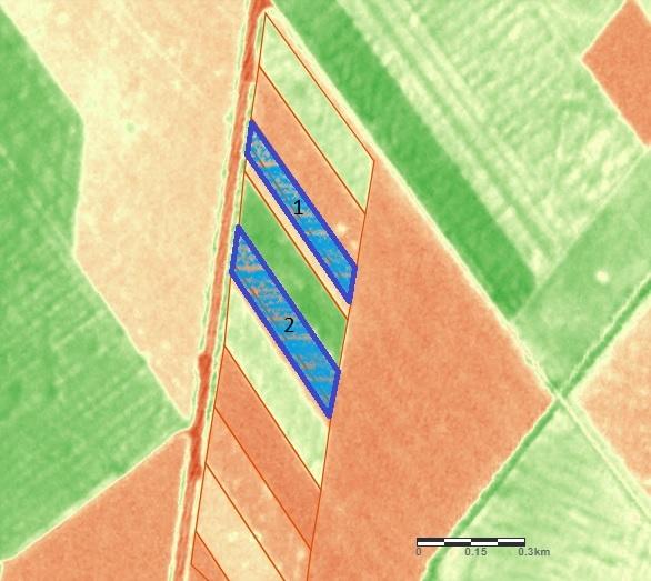 Обследованию подлежат участки, где убраны бобовые (№1) и зерновые (№2)