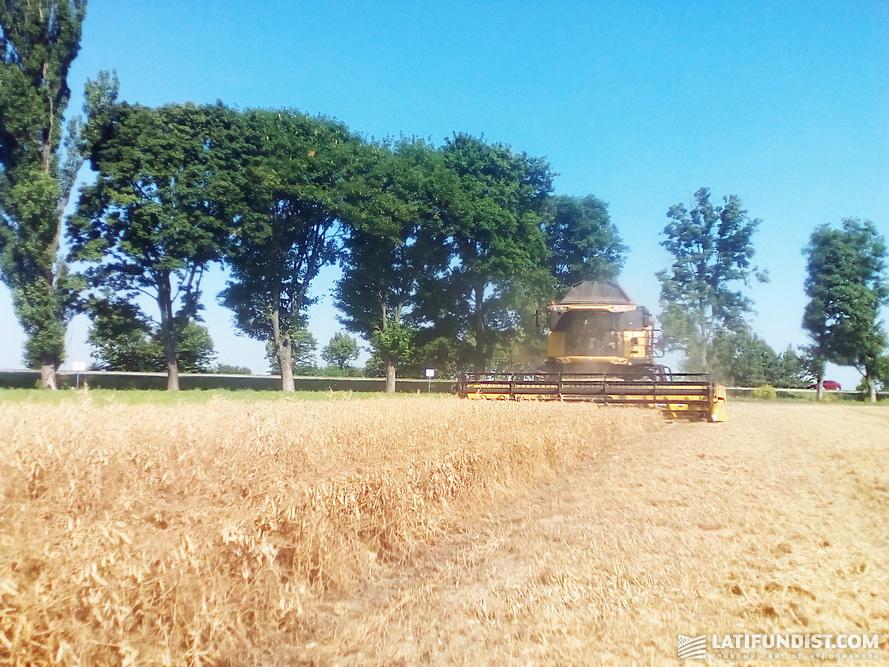 9 июля — сбор урожая гороха на Smart Field