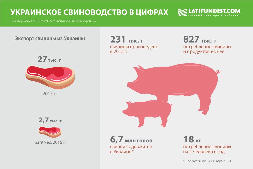 Украинское свиноводство в цифрах
