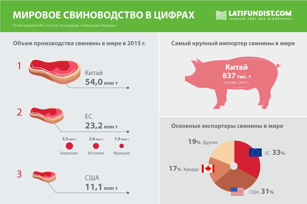 Мировое свиноводство в цифрах