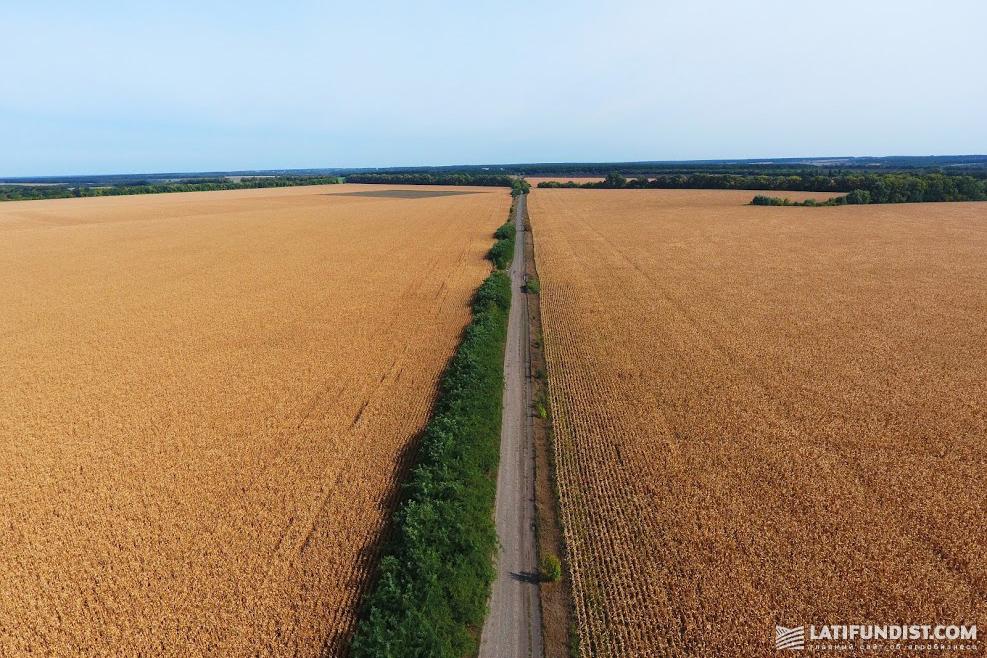В целом политика и Канады, и США направлена на то, чтобы сельхозземли оставались в собственности их граждан