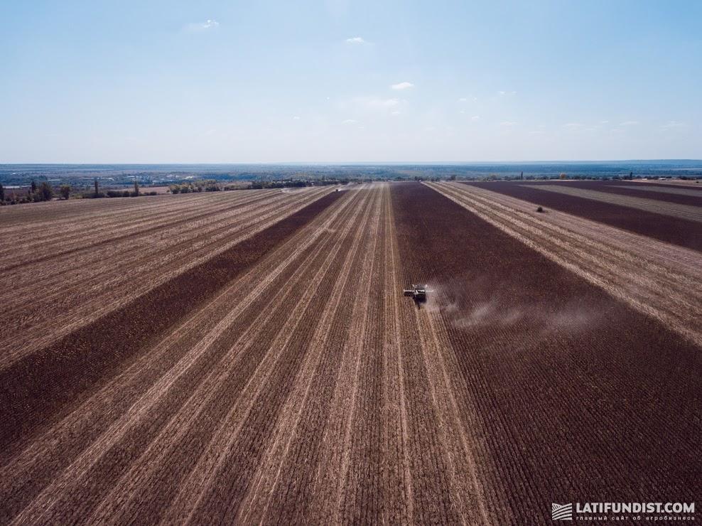 Условия покупки земли в разных странах различны. Но есть и общий фактор — рост ее стоимости вследствие баланса спроса и предложения