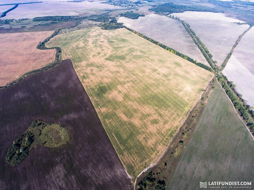Купить землю в европе кто купил квартиру в бурдж дубай