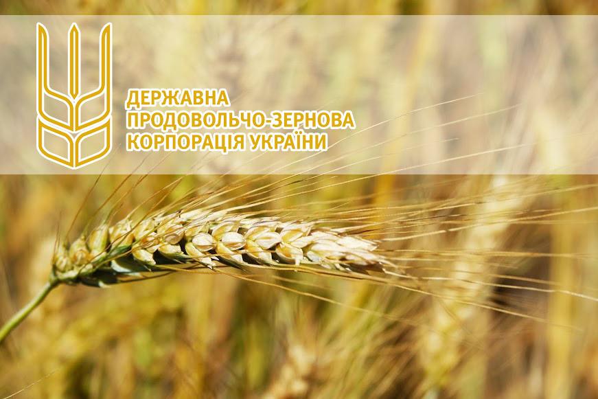 В начале 2018 года компания ГПЗКУ на 30% увеличила экспорт зерновых