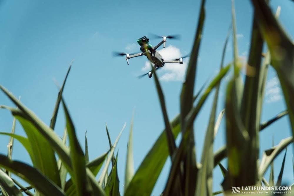 A drone flying over corn field in Ukraine