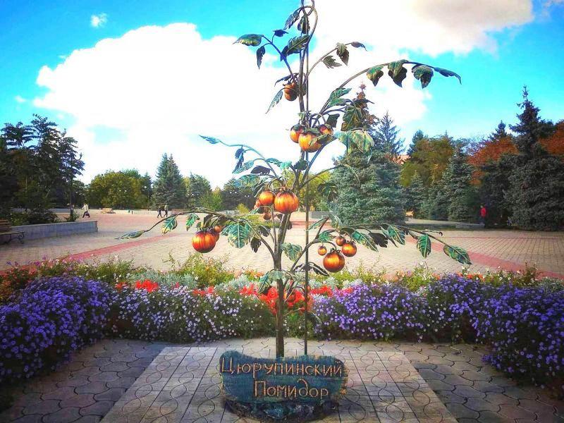 Цурюпинский помидор (г. Алешки, Херсонская область)