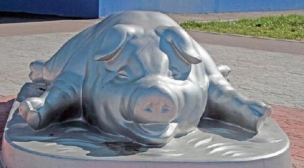 Свинья в грязи