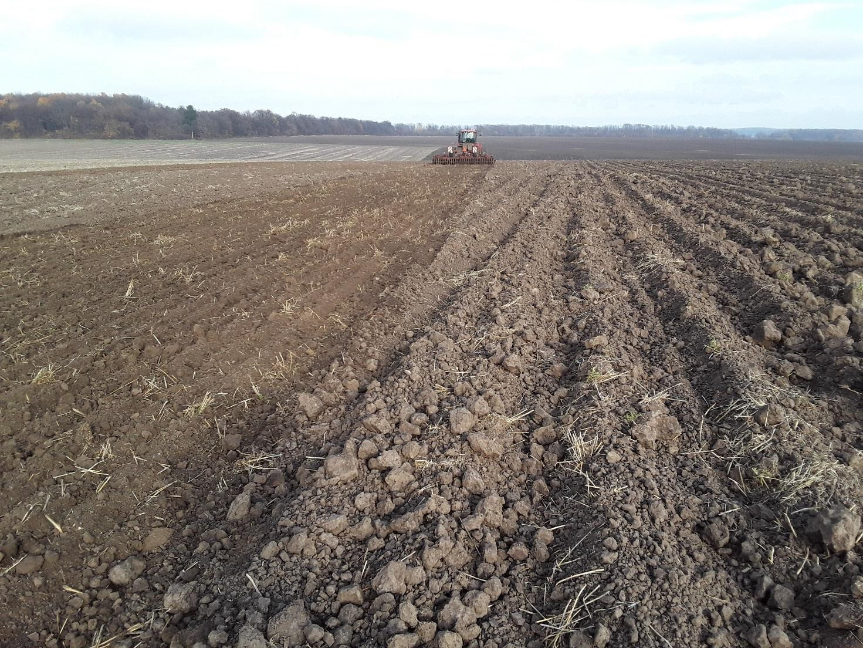 Культивация во второй след перед осенней нарезкой гребней под урожай 2020 г. в агрохолдинге «Континентал Фармерз Групп»