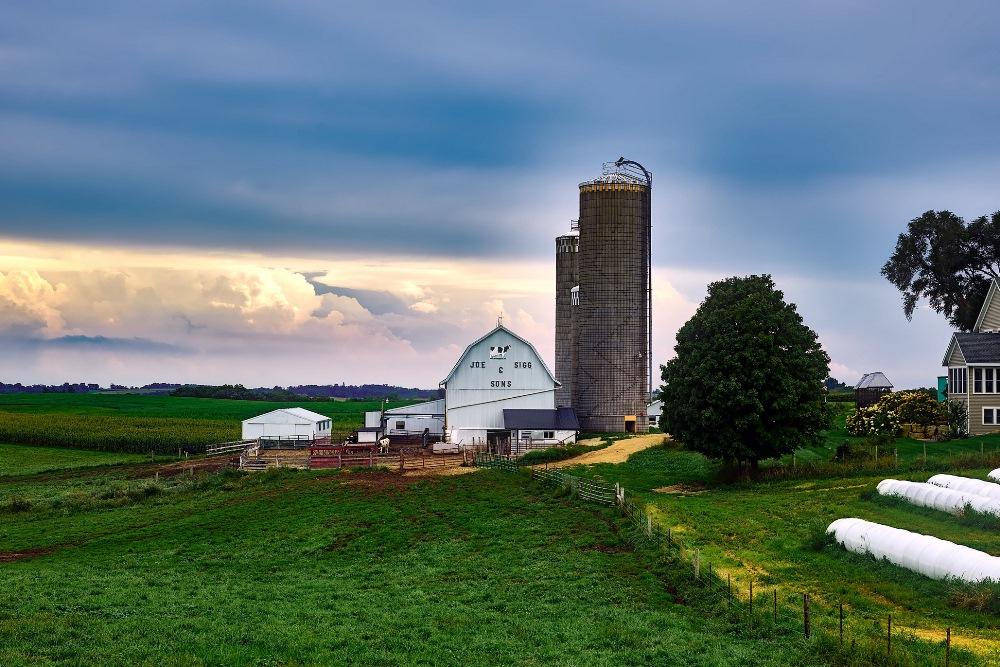 Семейная ферма