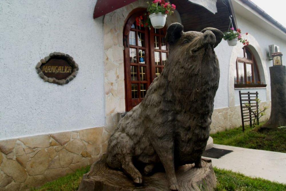 Памятник Венгерской мангалице