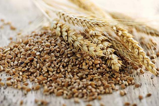 Образец Сертификата На Пшеницу