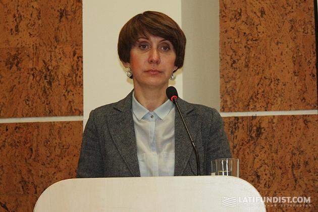 Директор компании «Саликс Энерджи» Ирина Гнап