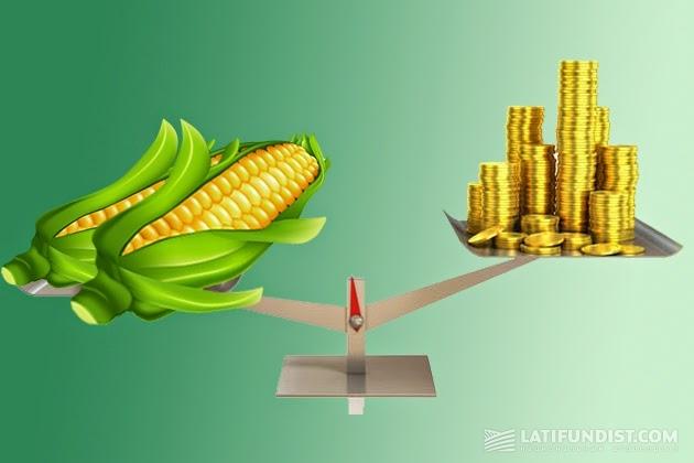 Больше всего шансов на приток денег в растениеводстве