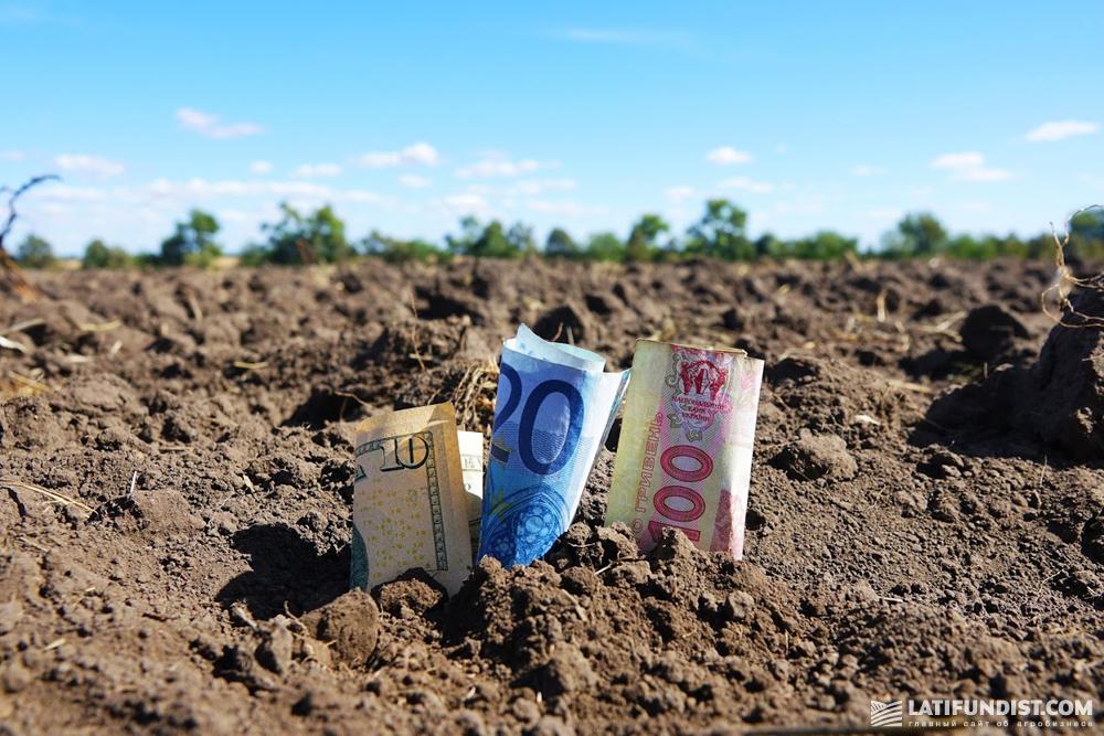 Приблизительно 300 млн грн кредитов банк выдал мелким и средним хозяйствам
