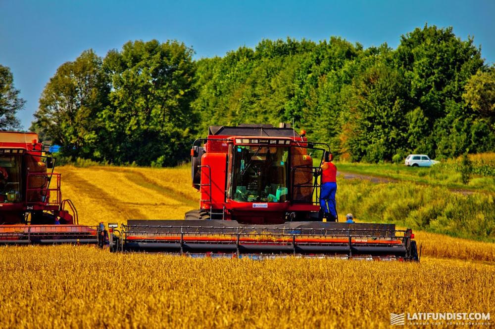 Уборка урожая зерновых в компании «Астарта-Киев»
