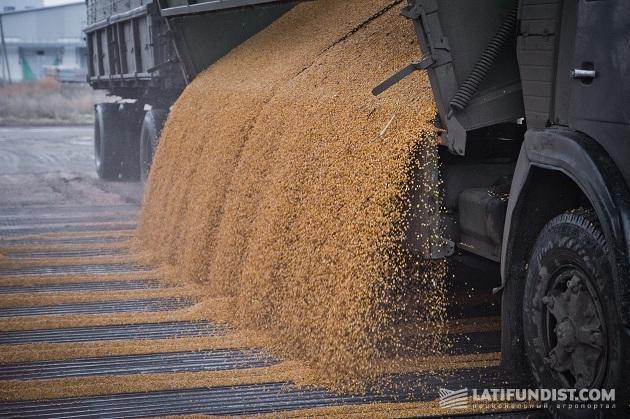 Выгрузка зерна на элеваторе