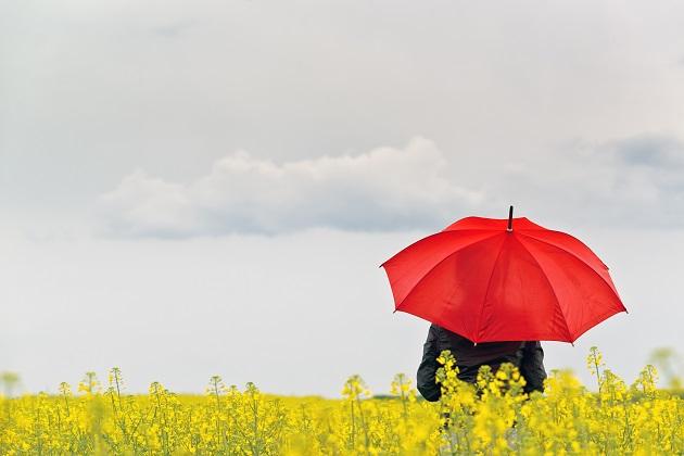 Что не так с агрострахованием в Украине?