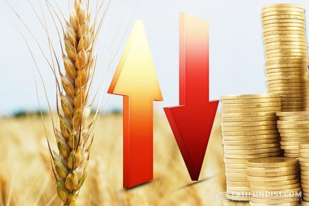 Урожай — вверх, а цены — вниз