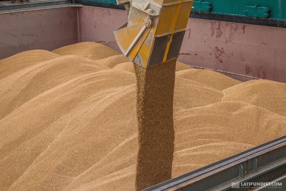 Загрузка зерна