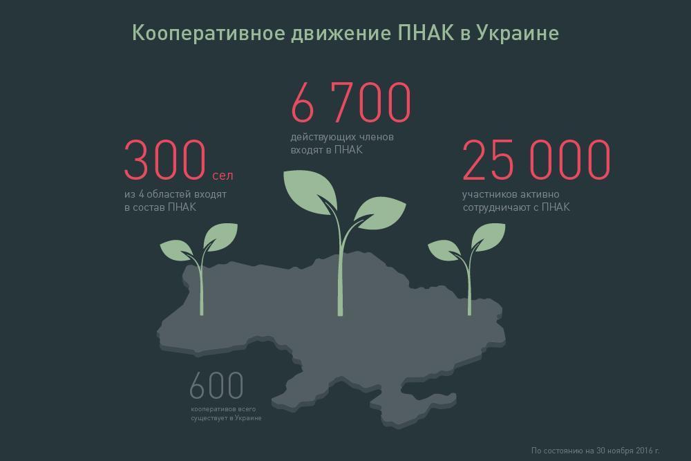 Кооперативное движение ПНАК в Украине